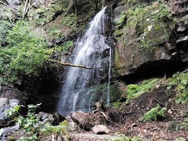 静岡県小山町頼光対面の滝